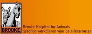 Logo Brooke Hospital